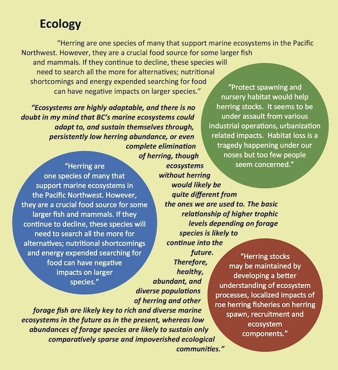 Views on Ecology